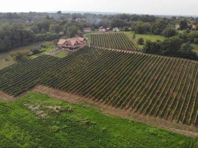 Vinogradarstvo Benkek